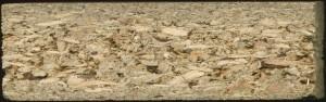 In Spanplatten lassen sich Urwaldhölzer trefflich 'verstecken'