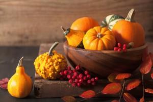 Titelbild Herbstmenü